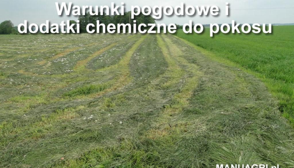 warunki_pogodowe2